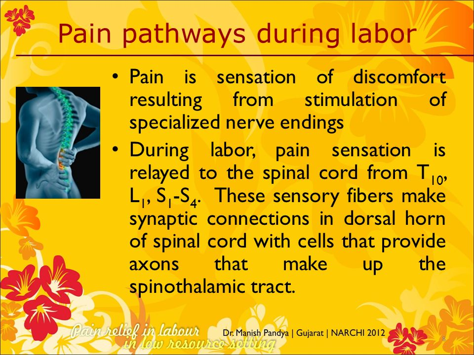 Pain pathways during labor Pain is sensation of discomfort resulting from stimulation of specialized nerve endings During labor, pain sensation is rel