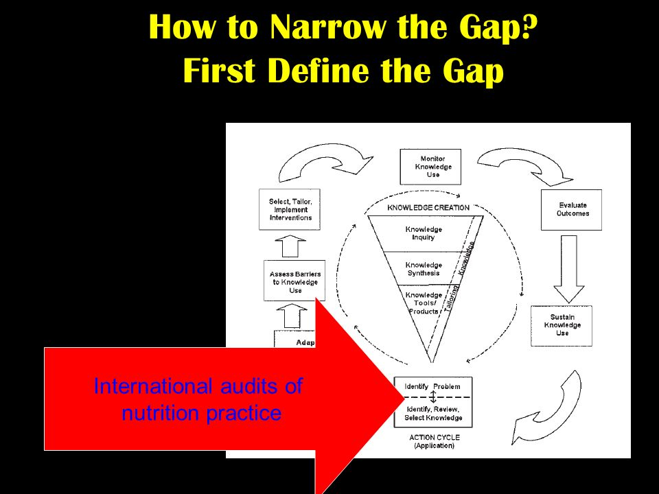How to Narrow the Gap First Define the Gap International audits of nutrition practice