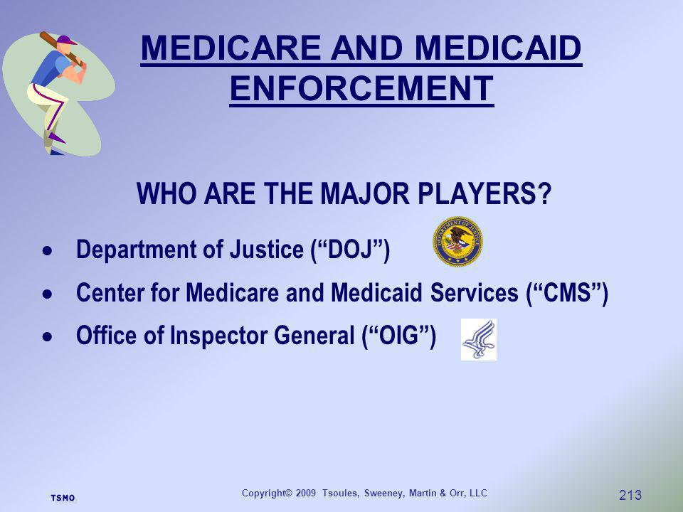 Copyright© 2009 Tsoules, Sweeney, Martin & Orr, LLC 213 WHO ARE THE MAJOR PLAYERS? Department of Justice (DOJ) Center for Medicare and Medicaid Servic
