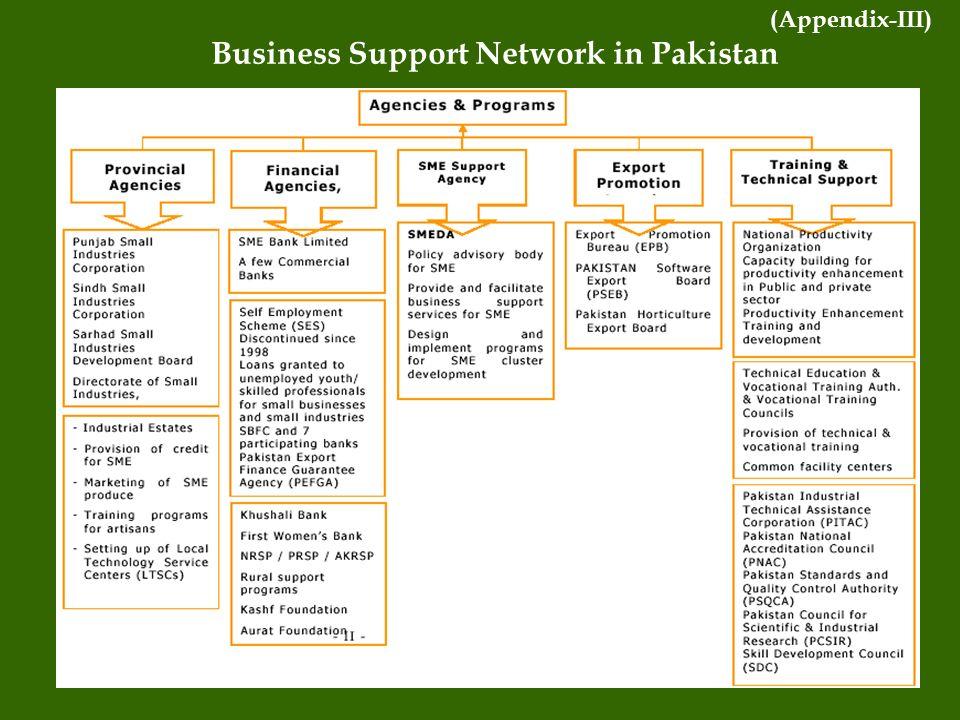 Business Support Network in Pakistan (Appendix-III)
