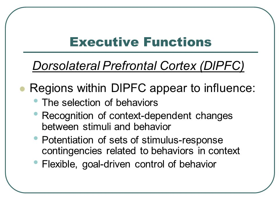 Executive Functions Dorsolateral Prefrontal Cortex (DlPFC) Regions within DlPFC appear to influence: The selection of behaviors Recognition of context