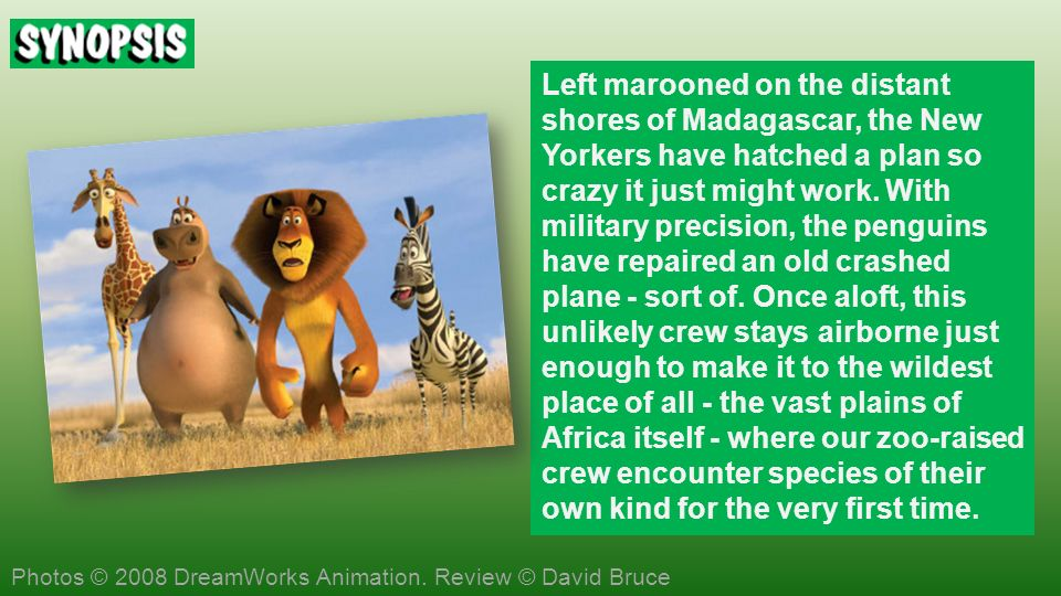 Left marooned on the distant shores of Madagascar, the New Yorkers have hatched a plan so crazy it just might work.