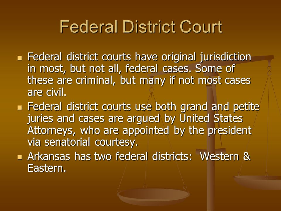 Federal District Court Federal district courts have original jurisdiction in most, but not all, federal cases. Some of these are criminal, but many if