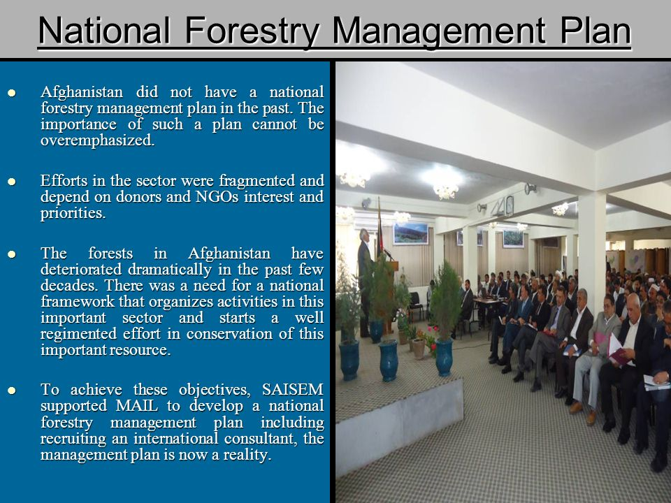 National Forestry Management Plan Afghanistan did not have a national forestry management plan in the past.