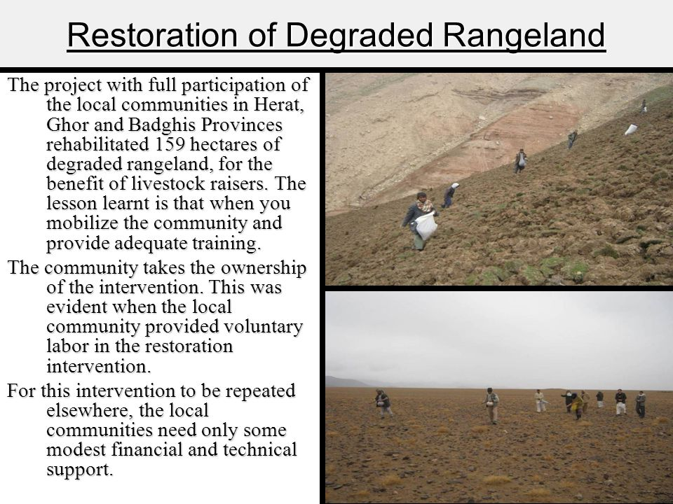 Restoration of Degraded Rangeland The project with full participation of the local communities in Herat, Ghor and Badghis Provinces rehabilitated 159 hectares of degraded rangeland, for the benefit of livestock raisers.