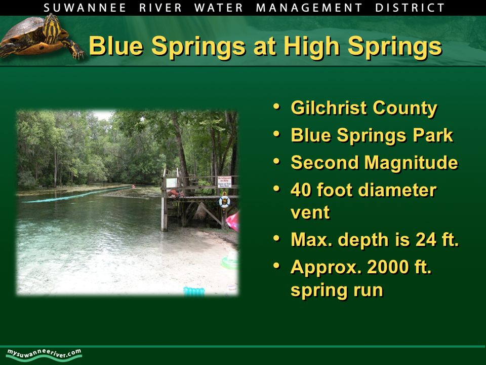 Blue Springs at High Springs Gilchrist County Blue Springs Park Second Magnitude 40 foot diameter vent Max.