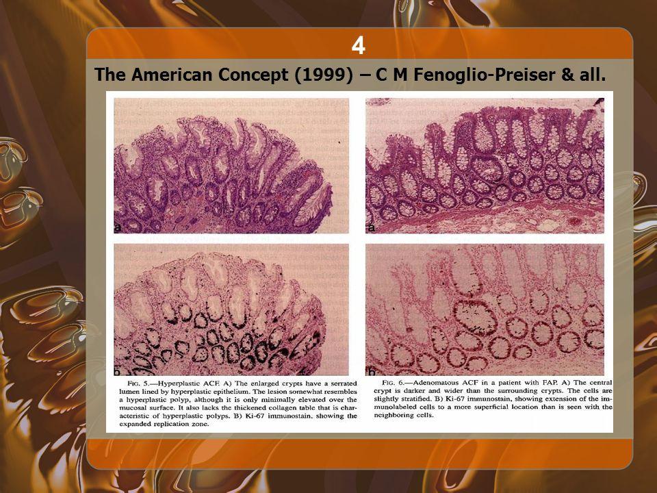4 The American Concept (1999) – C M Fenoglio-Preiser & all.