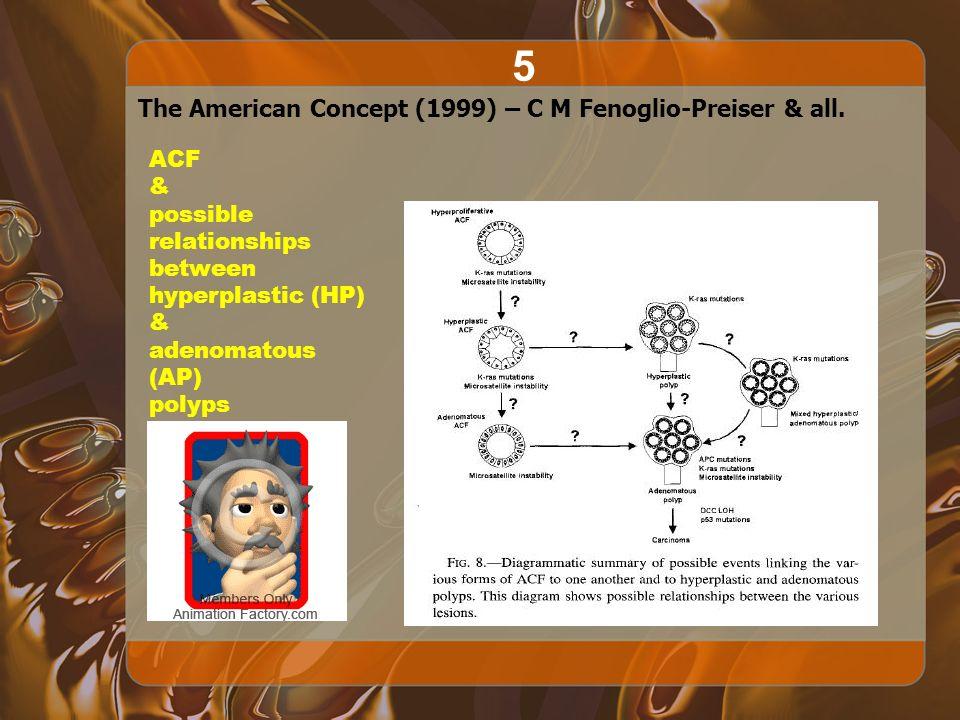 The American Concept (1999) – C M Fenoglio-Preiser & all.