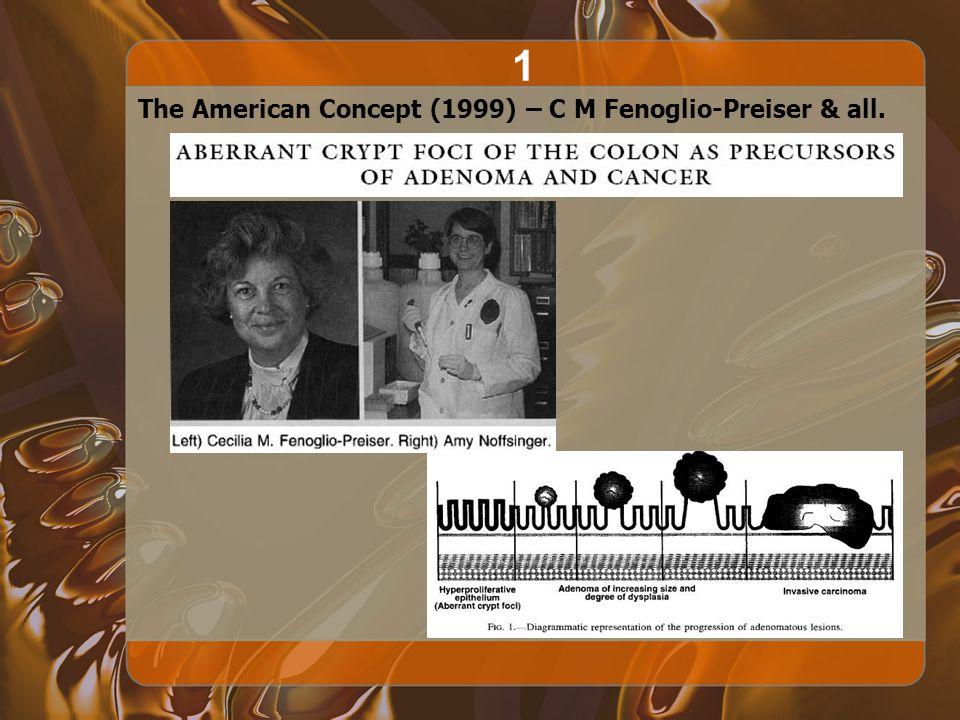 The American Concept (1999) – C M Fenoglio-Preiser & all. 1
