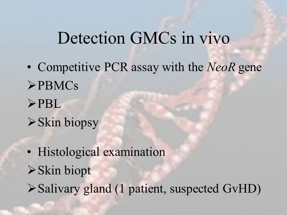 Detection GMCs in vivo Competitive PCR assay with the NeoR gene PBMCs PBL Skin biopsy Histological examination Skin biopt Salivary gland (1 patient, s