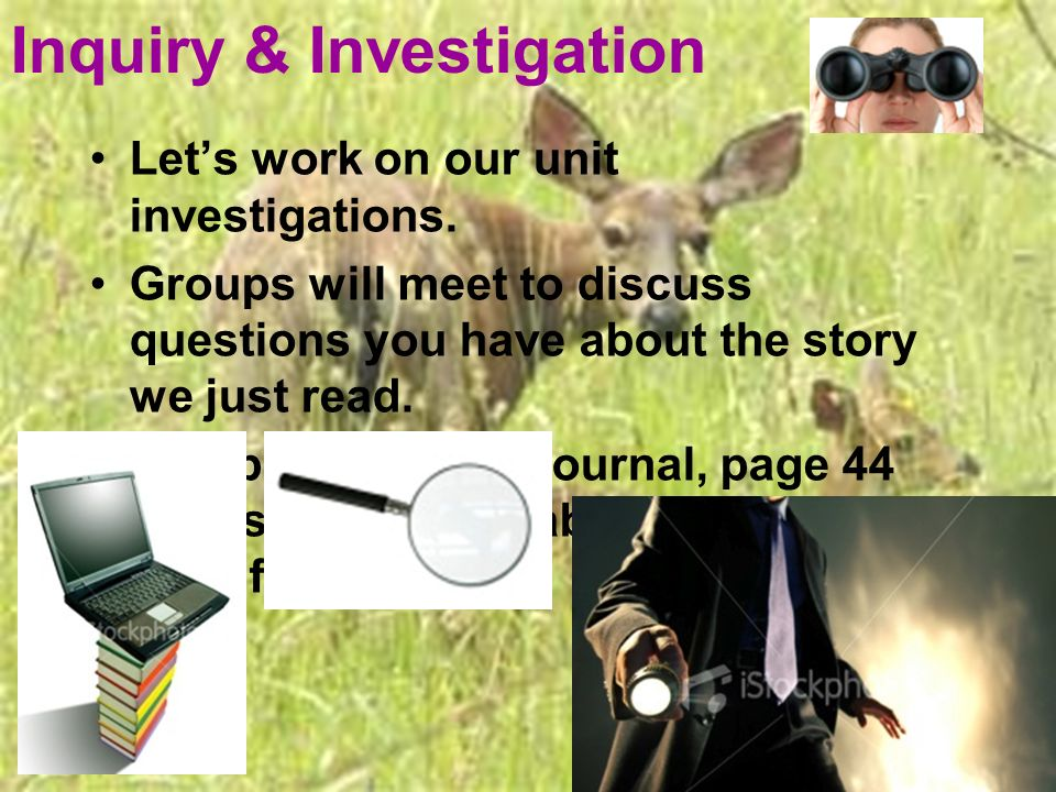 Inquiry & Investigation Lets work on our unit investigations. Groups will meet to discuss questions you have about the story we just read. Complete In