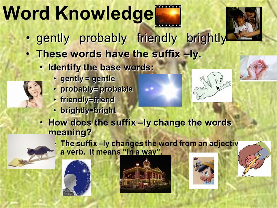 Day Five… General Review –General Review – Word KnowledgeWord Knowledge Lesson AssessmentLesson Assessment (Reading 2.1, 2.2 & 3..3 ) Two Days in May pp.
