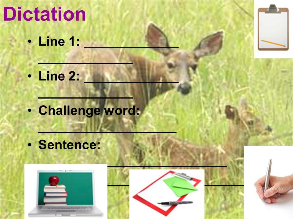 Dictation Line 1: _____________ _____________ Line 2: _____________ _____________ Challenge word: ___________________ Sentence: __________________________ _______________________________ _____