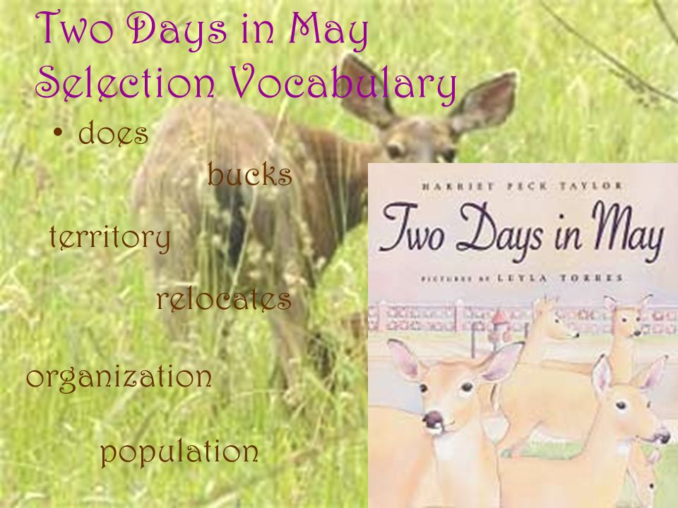 Two Days in May Selection Vocabulary does bucks territory organization population relocates