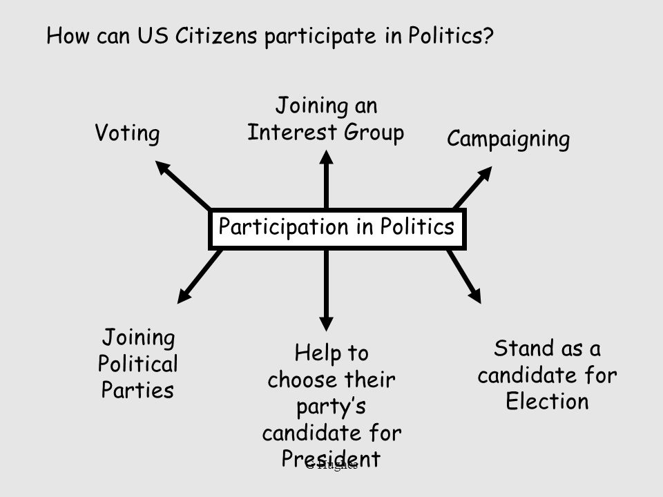 Participation in Politics Voting Joining Political Parties Help to choose their partys candidate for President Campaigning Stand as a candidate for El