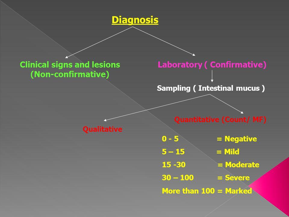 Diagnosis Clinical signs and lesions (Non-confirmative) Laboratory ( Confirmative) Sampling ( Intestinal mucus ) Qualitative Quantitative (Count/ MF)