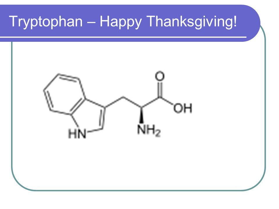 Tryptophan – Happy Thanksgiving!