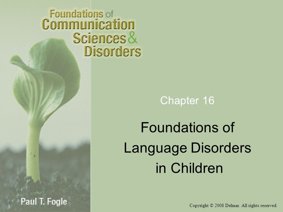 Copyright © 2008 Delmar. All rights reserved. Chapter 16 Foundations of Language Disorders in Children