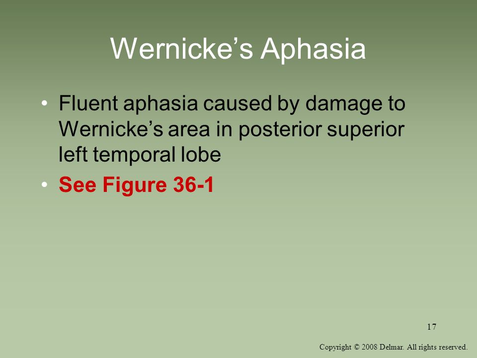 Copyright © 2008 Delmar. All rights reserved. 17 Wernickes Aphasia Fluent aphasia caused by damage to Wernickes area in posterior superior left tempor