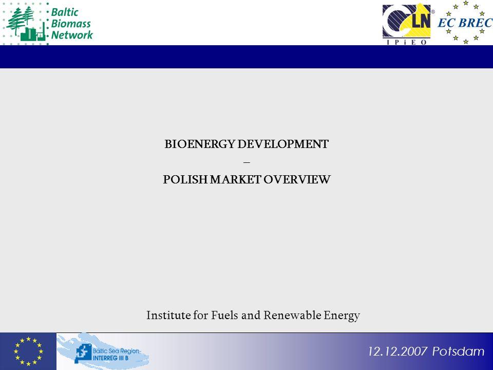 12.12.2007 Potsdam BIOENERGY DEVELOPMENT – POLISH MARKET OVERVIEW Institute for Fuels and Renewable Energy