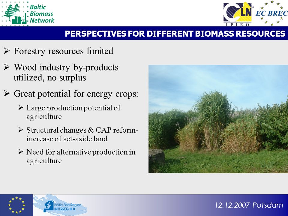 12.12.2007 Potsdam PERSPECTIVES FOR DIFFERENT BIOMASS RESOURCES Forestry resources limited Wood industry by-products utilized, no surplus Great potent