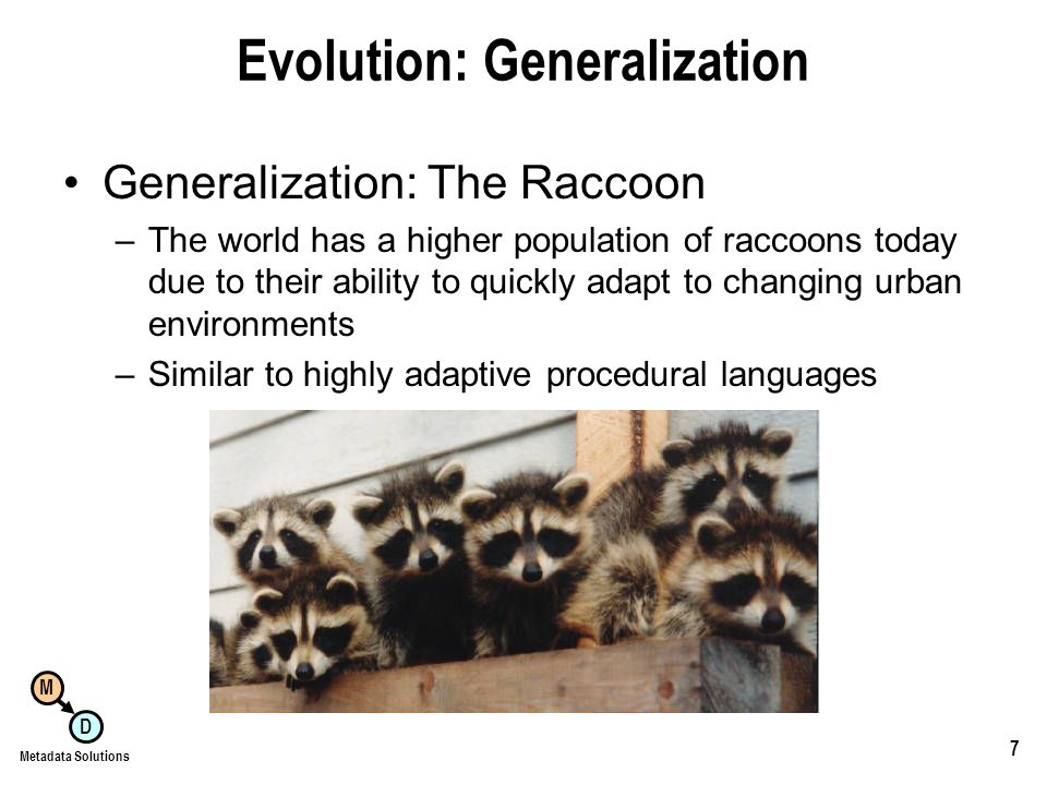 M D Metadata Solutions 7 Evolution: Generalization Generalization: The Raccoon –The world has a higher population of raccoons today due to their ability to quickly adapt to changing urban environments –Similar to highly adaptive procedural languages