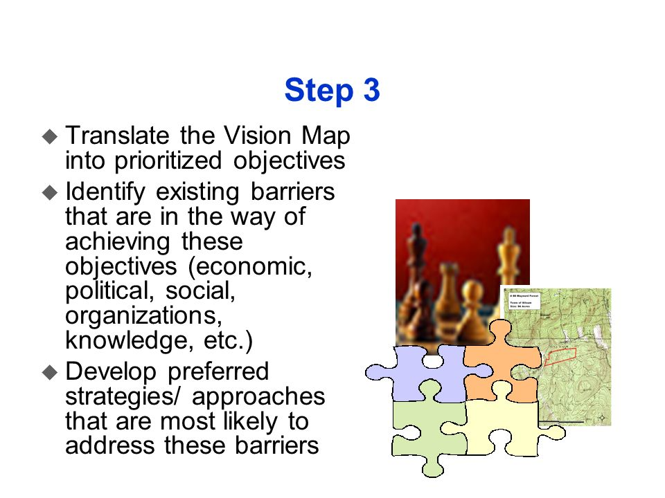 Step 3 u Translate the Vision Map into prioritized objectives u Identify existing barriers that are in the way of achieving these objectives (economic