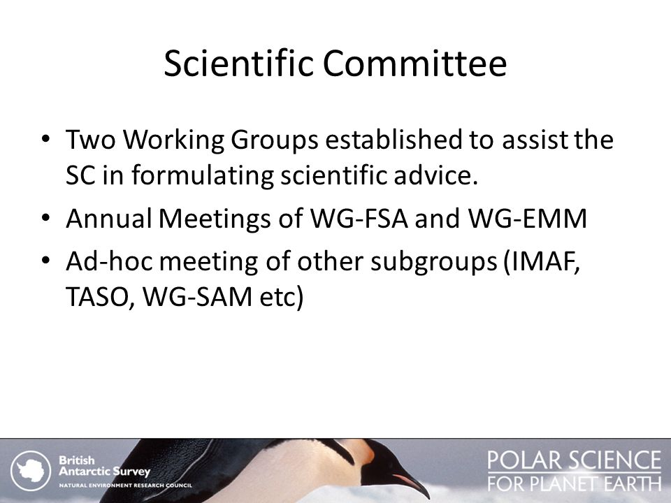 Scientific Committee Two Working Groups established to assist the SC in formulating scientific advice. Annual Meetings of WG-FSA and WG-EMM Ad-hoc mee