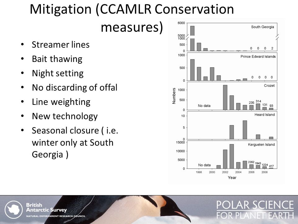 Mitigation (CCAMLR Conservation measures) Streamer lines Bait thawing Night setting No discarding of offal Line weighting New technology Seasonal clos