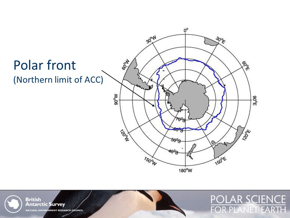 Polar front (Northern limit of ACC)