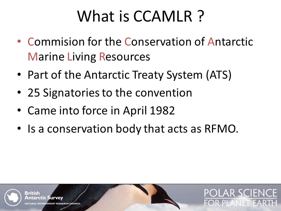 What is CCAMLR ? Commision for the Conservation of Antarctic Marine Living Resources Part of the Antarctic Treaty System (ATS) 25 Signatories to the c