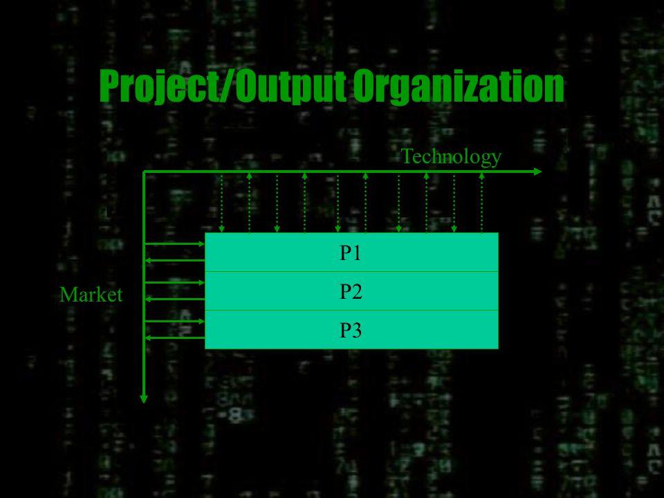 Functional/Departmental/Input Organization D1D2D3D4D5 Technology Market