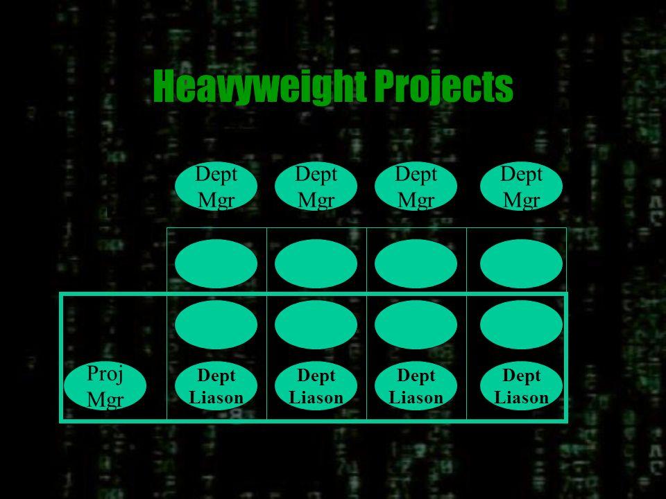 Lightweight Projects Dept Mgr Dept Liason Dept Mgr Dept Mgr Dept Mgr Proj Mgr Dept Liason Dept Liason Dept Liason MSF/SOLID Team Structure