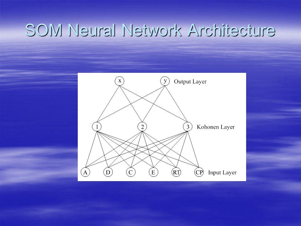 SOM Neural Network Architecture