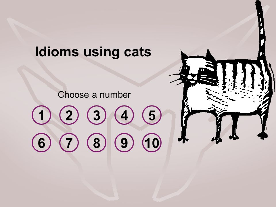 12345 678910 Choose a number Idioms using cats