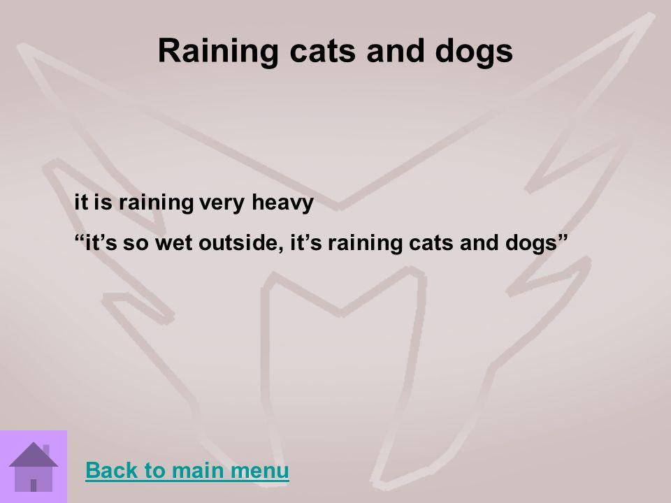 Raining cats and dogs it is raining very heavy its so wet outside, its raining cats and dogs Back to main menu