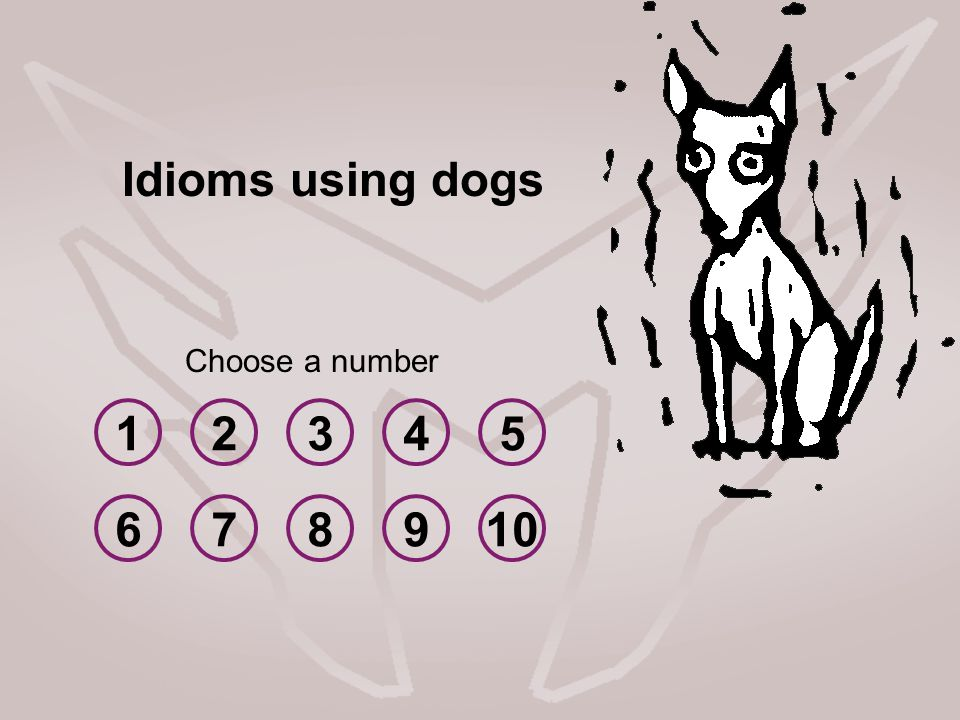 12345 678910 Choose a number Idioms using dogs