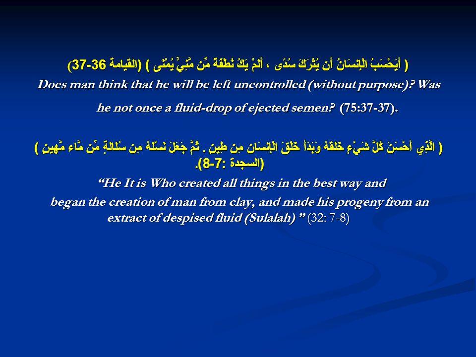 (( أَيَحْسَبُ الْإِنسَانُ أَن يُتْرَكَ سُدًى ، أَلَمْ يَكُ نُطْفَةً مِّن مَّنِيٍّ يُمْنَى ) ( القيامة 36-37 Does man think that he will be left uncontrolled (without purpose).