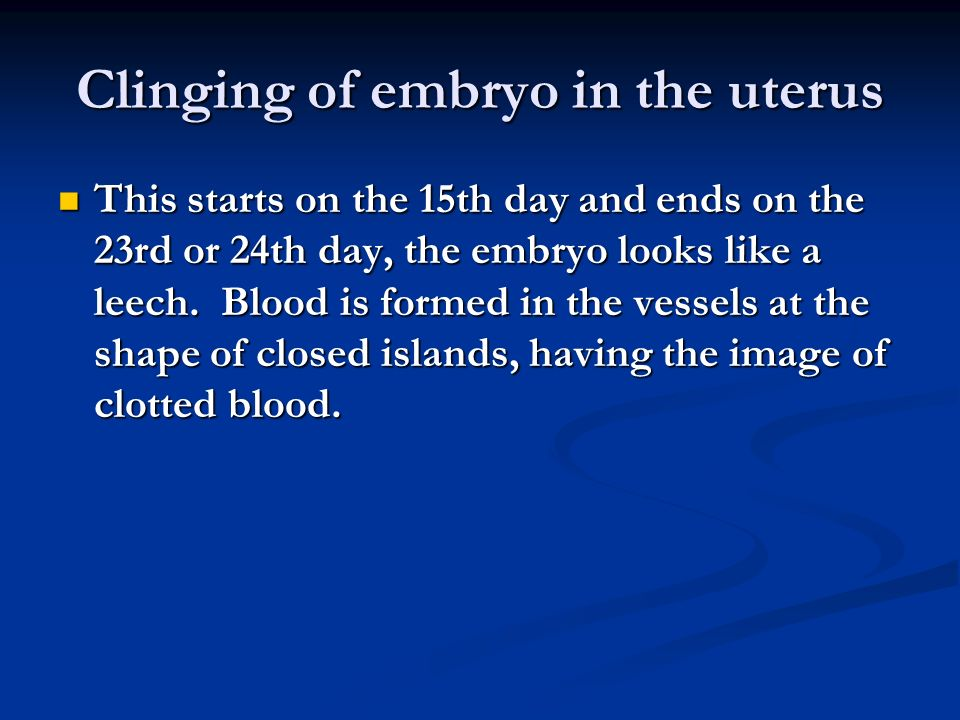 Clinging of embryo in the uterus This starts on the 15th day and ends on the 23rd or 24th day, the embryo looks like a leech.