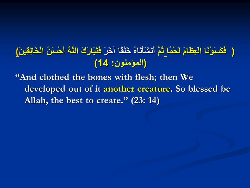 ( فَكَسَوْنَا الْعِظَامَ لَحْمًا ثُمَّ أَنشَأْنَاهُ خَلْقًا آخَرَ فَتَبَارَكَ اللَّهُ أَحْسَنُ الْخَالِقِينَ ) ( المؤمنون : 14) ) ) And clothed the bones with flesh; then We developed out of it another creature.