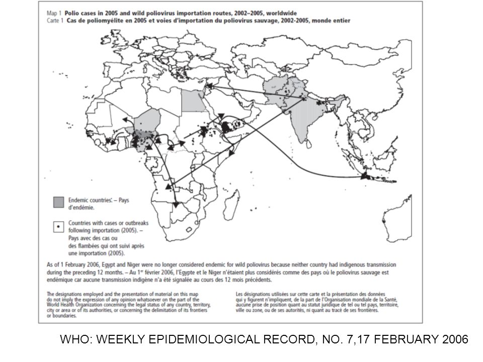 WHO: WEEKLY EPIDEMIOLOGICAL RECORD, NO. 7,17 FEBRUARY 2006