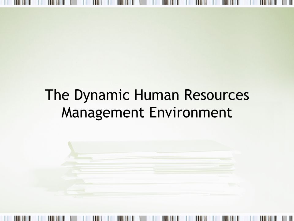 The Dynamic Human Resources Management Environment