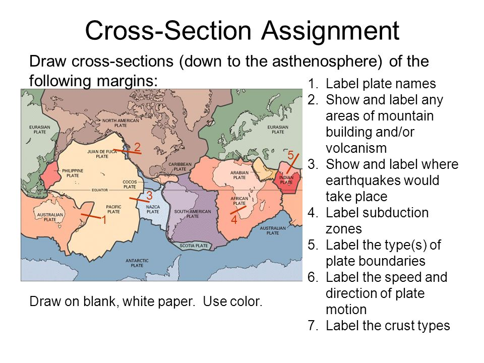 Cross-Section Assignment Draw cross-sections (down to the asthenosphere) of the following margins: 1 2 3 5 1.Label plate names 2.Show and label any areas of mountain building and/or volcanism 3.Show and label where earthquakes would take place 4.Label subduction zones 5.Label the type(s) of plate boundaries 6.Label the speed and direction of plate motion 7.Label the crust types 4 Draw on blank, white paper.