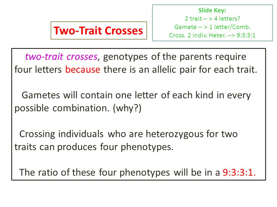 In two-trait crosses, genotypes of the parents require four letters because there is an allelic pair for each trait. Gametes will contain one letter o