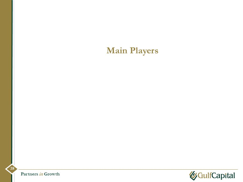 Main Players Partners in Growth 28