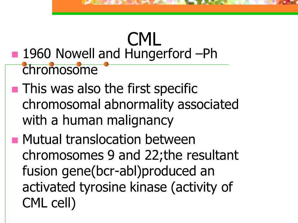 CML 1960 Nowell and Hungerford –Ph chromosome This was also the first specific chromosomal abnormality associated with a human malignancy Mutual translocation between chromosomes 9 and 22;the resultant fusion gene(bcr-abl)produced an activated tyrosine kinase (activity of CML cell)