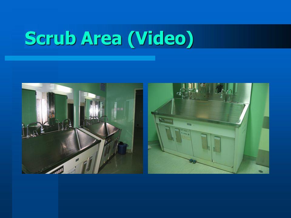 Scrub Area (Video)