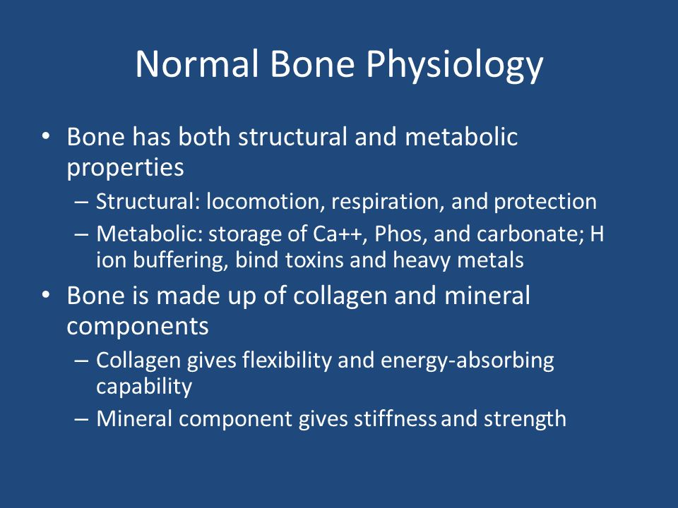 Normal Bone Physiology Bone has both structural and metabolic properties – Structural: locomotion, respiration, and protection – Metabolic: storage of Ca++, Phos, and carbonate; H ion buffering, bind toxins and heavy metals Bone is made up of collagen and mineral components – Collagen gives flexibility and energy-absorbing capability – Mineral component gives stiffness and strength