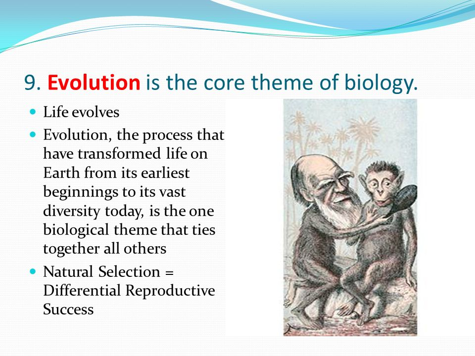 9. Evolution is the core theme of biology. Life evolves Evolution, the process that have transformed life on Earth from its earliest beginnings to its