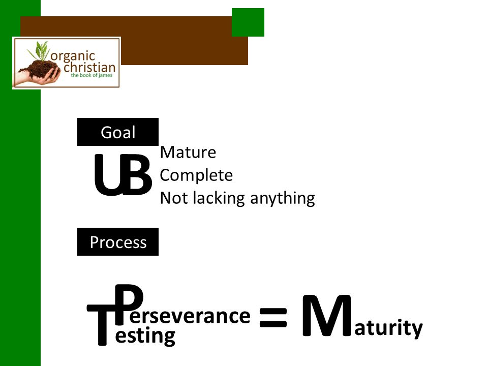 Goal Process Mature Complete Not lacking anything UB T erseverance aturity esting P M=